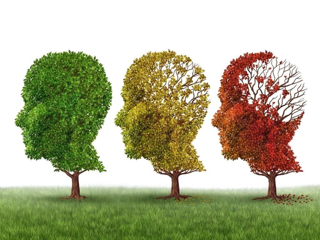 Unpacking Dementia